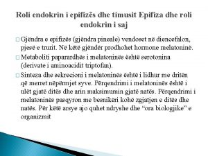 Roli endokrin i epifizs dhe timusit Epifiza dhe