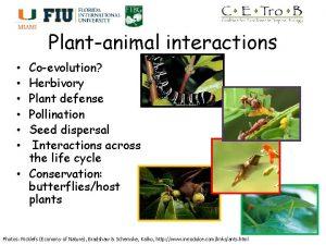 Plantanimal interactions Coevolution Herbivory Plant defense Pollination Seed
