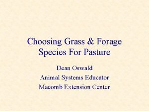 Choosing Grass Forage Species For Pasture Dean Oswald