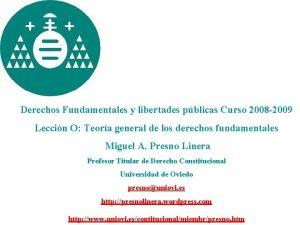 Derechos Fundamentales y libertades pblicas Curso 2008 2009