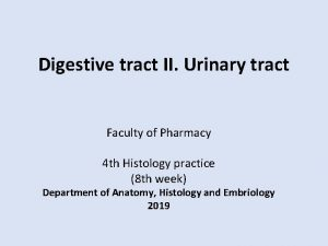 Digestive tract II Urinary tract Faculty of Pharmacy
