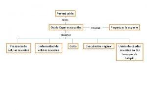 Fecundacin Unin OvuloEspermatozoide Finalidad Perpetuar la especie Propsitos