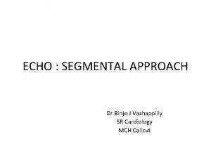 ECHO SEGMENTAL APPROACH Dr Binjo J Vazhappilly SR