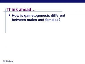 Think ahead How is gametogenesis different between males