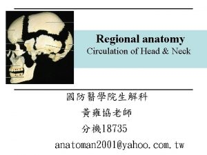 Regional anatomy Circulation of Head Neck 18735 anatoman