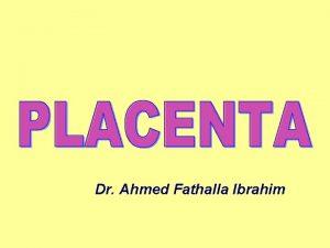 Dr Ahmed Fathalla Ibrahim DECIDUA DEFINITION 1 It