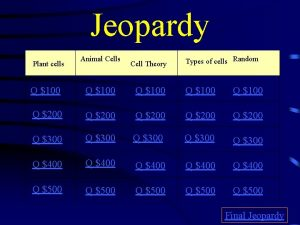 Jeopardy Plant cells Animal Cells Cell Theory Types