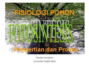 FISIOLOGI POHON Pengertian dan Proses Fakultas Kehutanan Universitas