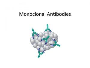 Monoclonal Antibodies Antibodies have important uses beyond fighting