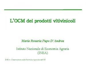 LOCM dei prodotti vitivinicoli Maria Rosaria Pupo DAndrea
