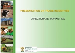 PRESENTATION ON TRADE INCENTIVES DIRECTORATE MARKETING INCENTIVES BY