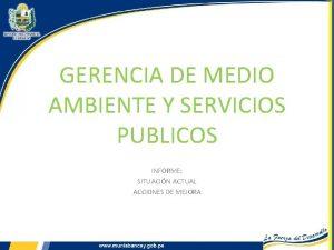 GERENCIA DE MEDIO AMBIENTE Y SERVICIOS PUBLICOS INFORME