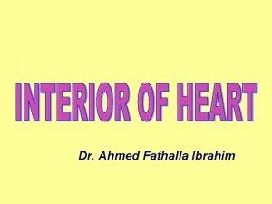 Dr Ahmed Fathalla Ibrahim RIGHT ATRIUM RIGHT ATRIUM