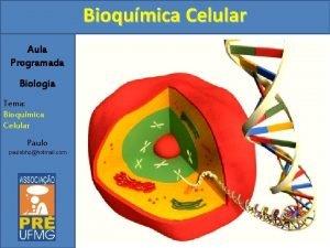 Bioqumica Celular Aula Programada Biologia Tema Bioqumica Celular