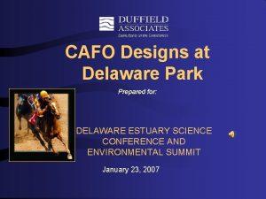 CAFO Designs at Delaware Park Prepared for DELAWARE