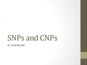 SNPs and CNPs By David Wendel What are