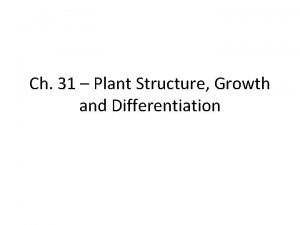 Ch 31 Plant Structure Growth and Differentiation Plant