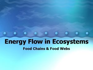Energy Flow in Ecosystems Food Chains Food Webs