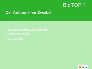 Bio TOP 1 Der Aufbau einer Zwiebel schrittweiser