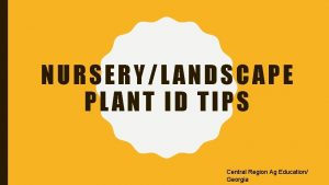NURSERYLANDSCAPE PLANT ID TIPS Central Region Ag Education