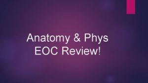 Anatomy Phys EOC Review SC 912 L 14