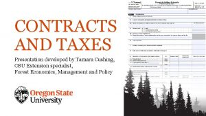 CONTRACTS AND TAXES Presentation developed by Tamara Cushing