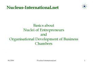 NucleusInternational net Basics about Nuclei of Entrepreneurs and