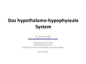 Das hypothalamohypophyseale System Dr Arnold Szab szabo arnoldmed