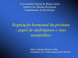 Universidade Federal de Minas Gerais Instituto de Cncias