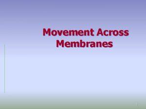Movement Across Membranes 1 1 Diffusion 2 Diffusion