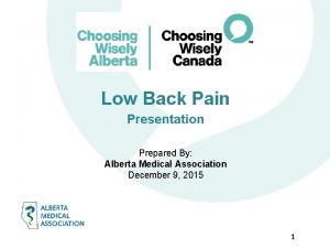 Low Back Pain Presentation Prepared By Alberta Medical