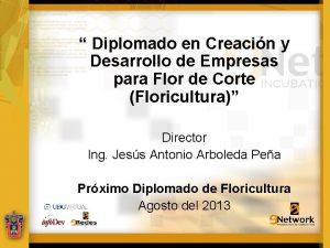 Diplomado en Creacin y Desarrollo de Empresas para