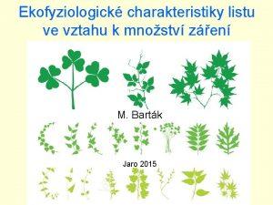 Ekofyziologick charakteristiky listu ve vztahu k mnostv zen