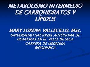 METABOLISMO INTERMEDIO DE CARBOHIDRATOS Y LPIDOS MARY LORENA