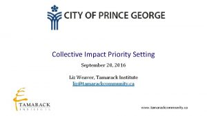 Collective Impact Priority Setting September 20 2016 Liz