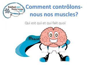 Comment contrlonsnous nos muscles Qui est qui et