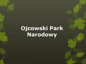 Ojcowski Park Narodowy Jest to najmniejszy polski park