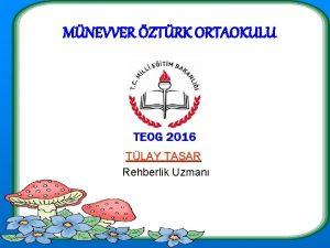 MNEVVER ZTRK ORTAOKULU TLAY TAAR Rehberlik Uzman 2015