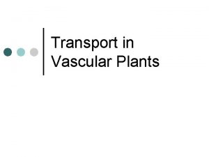 Transport in Vascular Plants Why does transport need