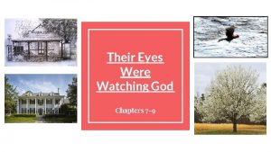 Their Eyes Were Watching God Chapters 7 9