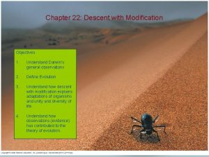 Chapter 22 Descent with Modification Objectives 1 Understand
