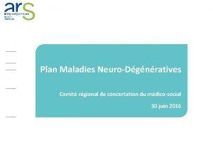 Plan Maladies NeuroDgnratives Comit rgional de concertation du