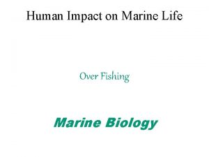Human Impact on Marine Life Over Fishing Marine