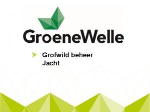 Grofwild beheer Jacht Wild en Grofwild Wild volgens
