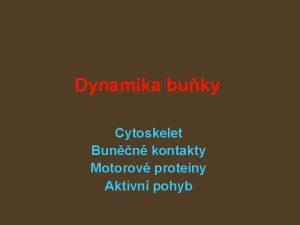 Dynamika buky Cytoskelet Bunn kontakty Motorov proteiny Aktivn