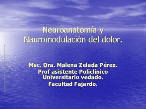 Neuroanatoma y Nauromodulacin del dolor Msc Dra Malena