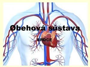 Obehov sstava SRDCE Srdce orgn Srdce je dut
