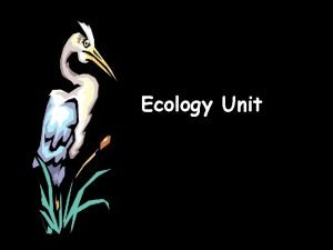 Ecology Unit What is ecology Ecology the scientific