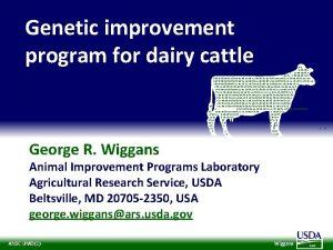 Genetic improvement program for dairy cattle 100 011110