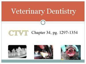 Veterinary Dentistry CTVT Chapter 34 pg 1297 1354